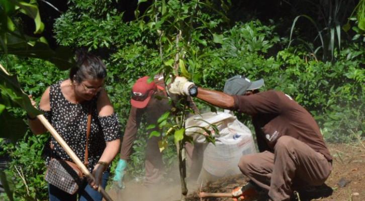 Dia do Meio Ambiente estimula ações e reflexões na UFBA