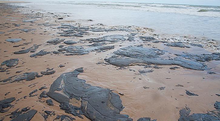Pesquisadores da UFBA lideram 3 dos 11 projetos selecionados pelo CNPq para investigar impactos do óleo no litoral