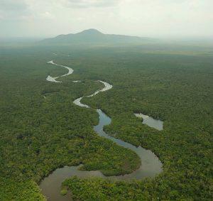 A floresta amazônica éamazonia-Ricardo-Azour