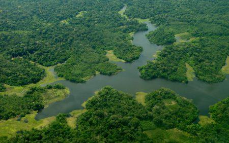 O Brasil é um dos países mais ricos em biodiversidade em todo o mundo