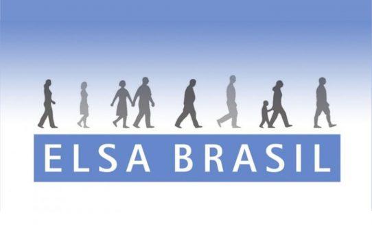elsa-brasil-2-542x340