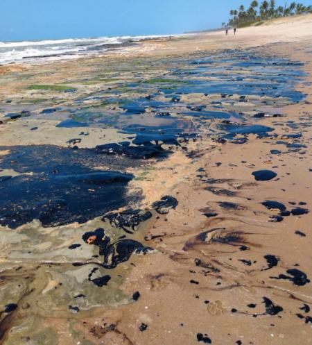 O óleo que já atingiu centenas de localidades do litoral brasileiro é altamente tóxicos advertem os pesquisadores