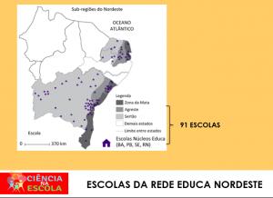 rede-educa-5