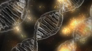 dna-ambiental-materia