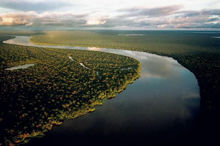 Ricardo Galvão estima que  serão mais de 12mil km2 de florestas destruídos no país no ano de 2020
