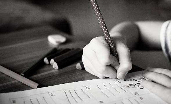O projeto REC - Reforço Educacional em Casa oferece cursos de idiomas, disciplinas isoladas e correção de redação